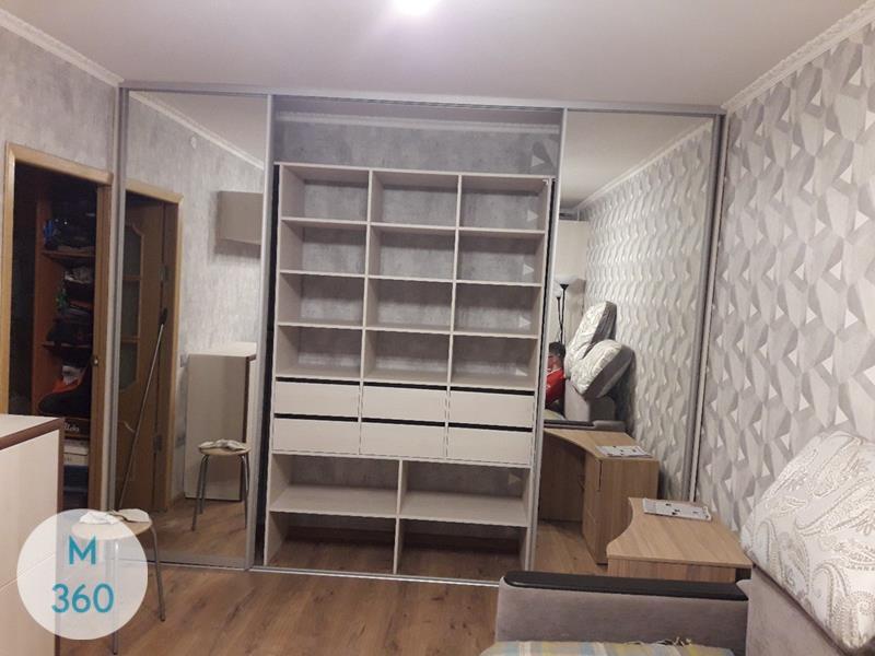 Шкаф купе в спальню Бужумбура Арт 008425743